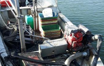 Pescatori abusivi, stangata delle Fiamme gialle
