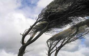 Attenzione: emanata l'allerta per vento forte lungo la costa