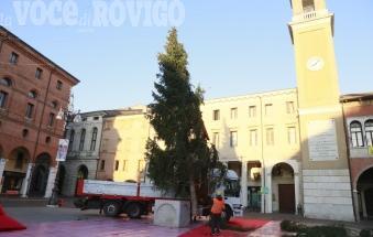 E' arrivato l'albero di Natale sul liston!