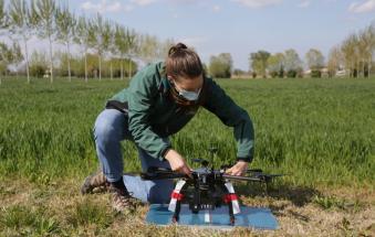Agrivoltaico, beneficio alle colture