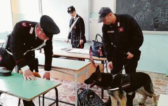 Gli studenti non vogliono il cane antidroga in classe: scatta la protesta