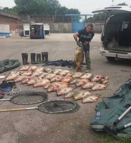 Bracconaggio nel Po, 11 denunciati, una tonnellata di pesce sequestrata