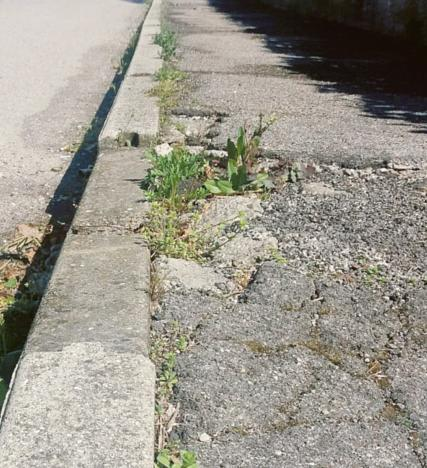 Strada e marciapiedi pericolosi, il dramma della frazione