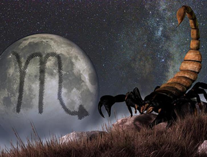 Il vostro oroscopo di oggi: al top c'è lo Scorpione