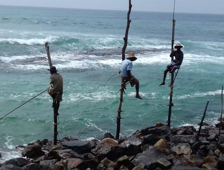 Sri Lanka, isola che risplende