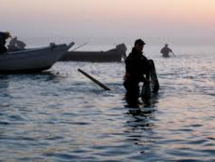 Pesca, 3mila aziende e 8mila posti di lavoro in bilico
