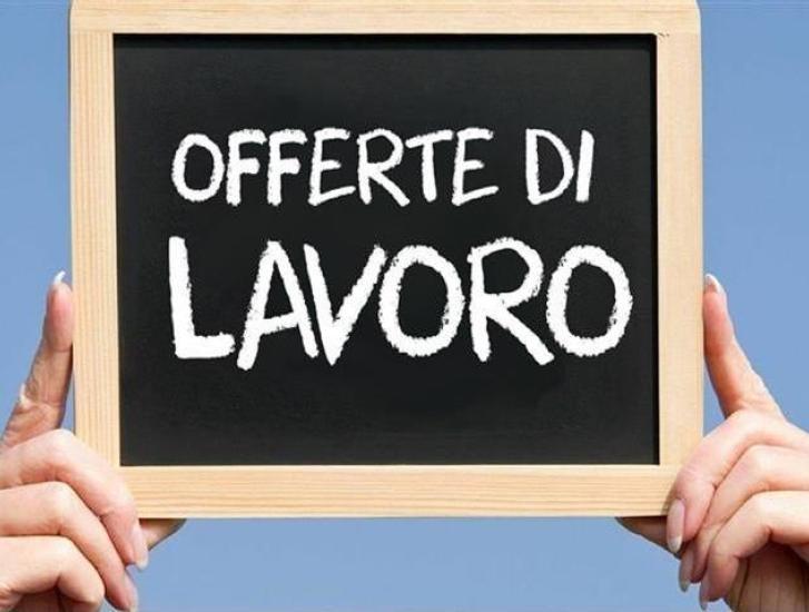 Sono arrivate 78 nuove offerte di lavoro a Rovigo e provincia