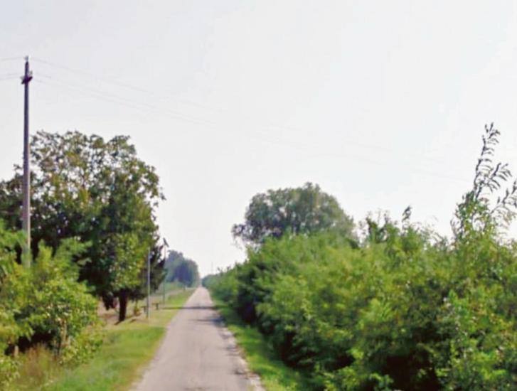 Alberi e panche lungo la ciclabile