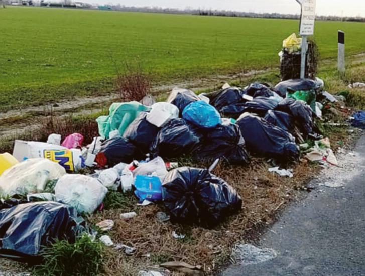 """""""Fototrappole in Transpolesana contro i vandali delle piazzole"""""""