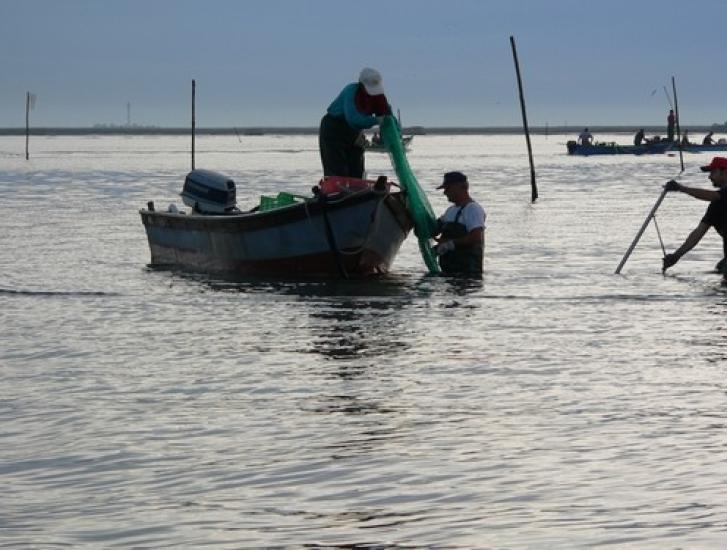 Pesca, un settore che ha fatto il salto di qualità
