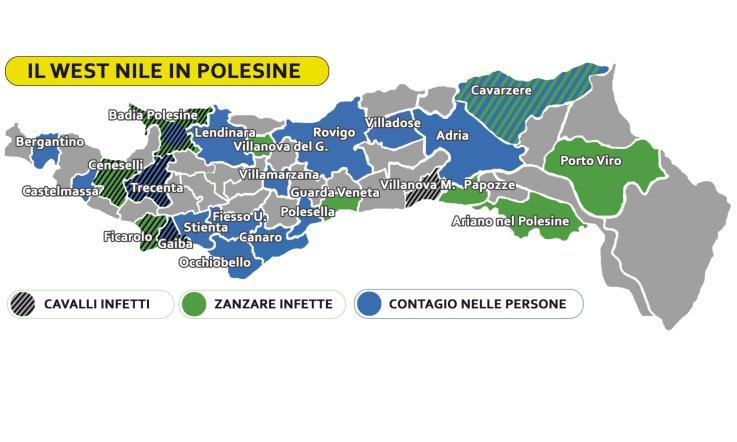 Ferrara, la zanzara West Nile fa altre vittime: 2 morti