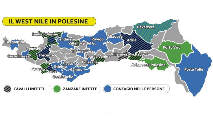 Febbre West Nile, 51 casi accertati in Veneto