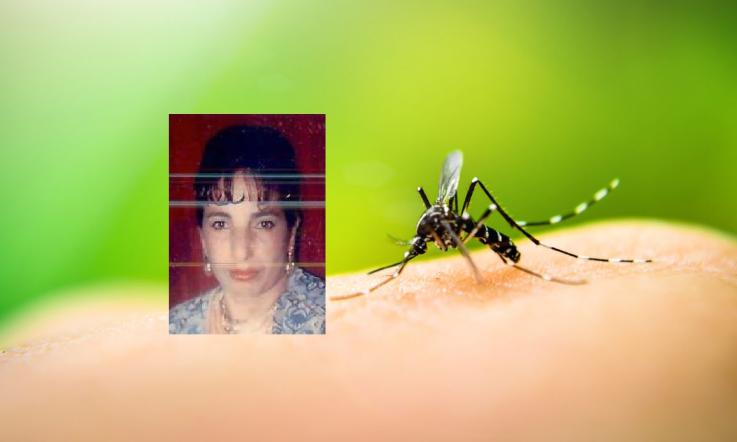 West Nile, due donne morte a Bologna
